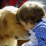 ペットの犬が赤ちゃんを噛み殺しちゃった!いや、笑えないって…